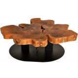 ANC Wood slab series Coffee table Live Edge Free Form