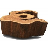 ANC Wood slab series Coffee table Organic Solid Salvaged 1