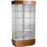 CS Series All glass Alu Display Case 10-6