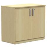 NWS Easy Series Hinged Door Cabinet H720, W800