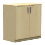 NWS Easy Series Hinged Door Cabinet H825, W800